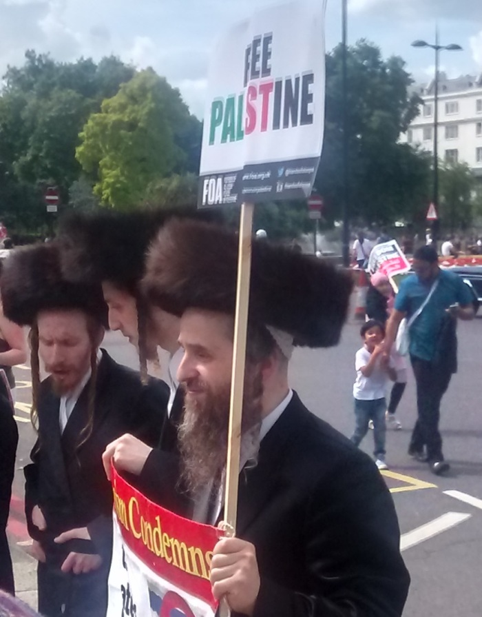 Orthodox Jews on the protest
